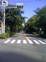 通り15R.jpg