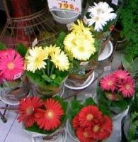 花やさん.JPG