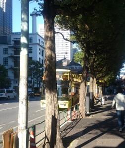 はとバス&東京駅